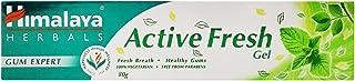Himalaya Toothpaste - Active Fresh Gel, 80g Carton