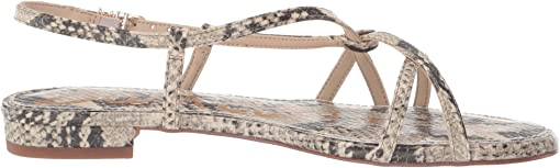 Beach Multi Pacific Snake Print