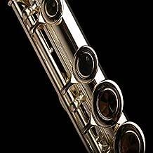 Flute Sheet Music Videos
