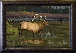 Hayden Lambson Elk Custom Framed Giclee Canvas Print - Coming to The Challenge Artist Wildlife Artwork