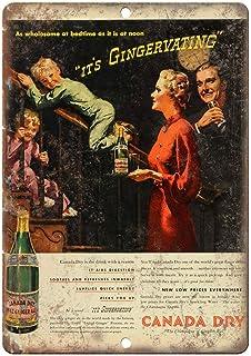 Watermelo Cana Dry Ginger Ale Carteles de Chapa Carteles de Advertencia Carteles de Metal Decorado Bar Restaurante Cocina Oficina Tema Boda Cumpleaños Navidad Pascua Regalo