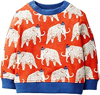 EULLA Little Boys Sweatshirt Toddler Boys Dinosaur Clothes Baby Pullover Sweater Kids Pullover for Boys 1-7 Years Olds…