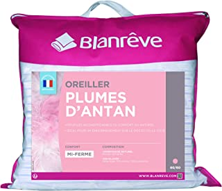 Blanrêve Oreiller Plume 60 x 60 , Blanc