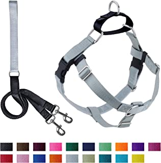 2 Hounds Design Freedom No-Pull Dog Harness with Leash, Small