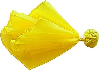 Coast Athletic Football Penalty Flag