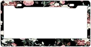 Nummernschild Rahmen Vintage Blumen Edelstahl, Auto Tag, Nummernschild Rahmen für Frauen, License Plate Cover für US Fahrzeuge Standard