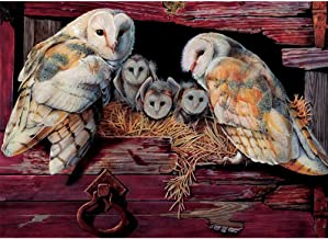 barn owl cross stitch kit