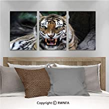 Canvas Wall Art HD Tiger Face with Roaring Wildlife Safari Savannah Animal Nature Zoo Photo Print Modern Canvas Prints Painting Artworks Oil Painting Decorative,15.7