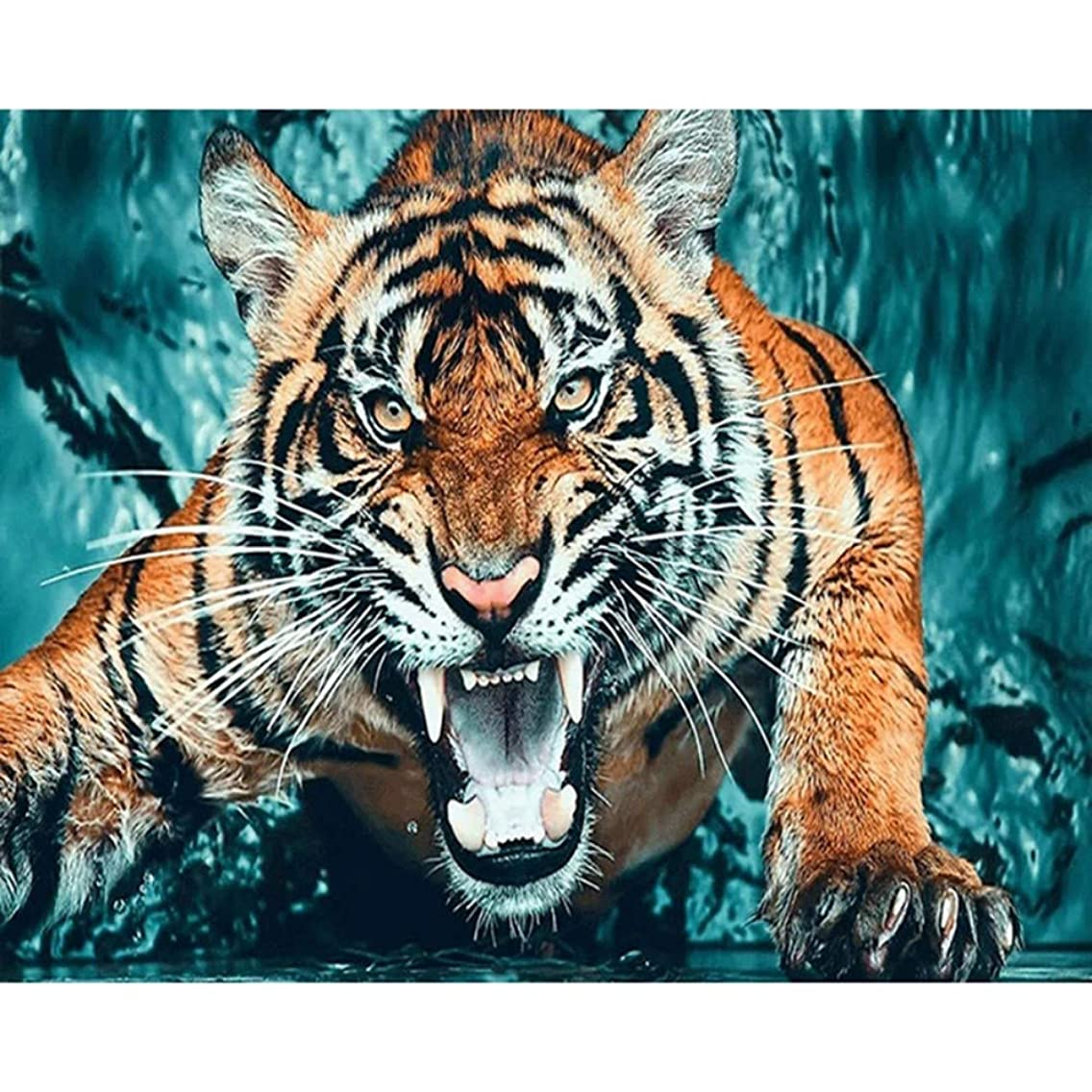 HYDWX Paint by Numbers for Senior Junior Beginner Level Painting by Numbers Set Tiger with Brushes Paints and Canvas Home Decor 16X20 Inch