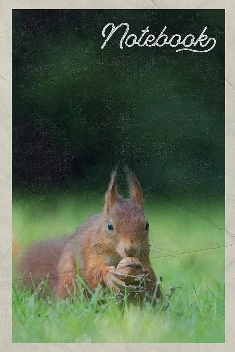 スポット開業医細断Notebook: Ardilla scoiattolo rosso Pretty Composition Book Journal Diary for Men, Women, Teen & Kids Vintage Retro Design for American Red Squirrel Fans