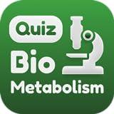Metabolism Quiz