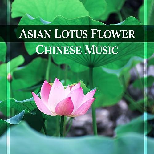 Asian Lotus Flower Chinese Music Relax Meditate Sleep Oriental