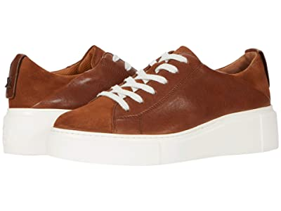 Paul Green Debbie Sneaker (Toffee Cognac Combo) Women