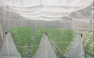 Shahji Creation Garden Shade Mosquito And Mesh Net 10Mts White Roll