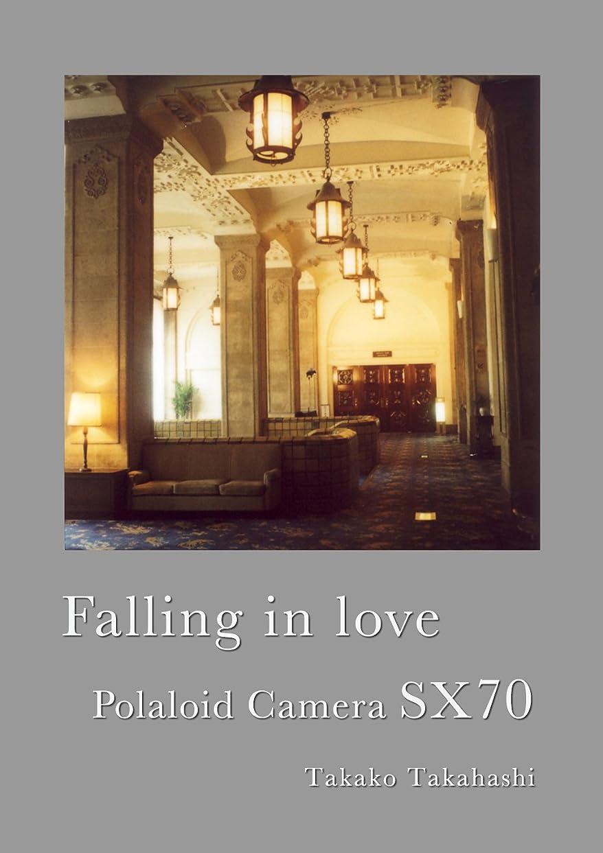 膨らみまでプールポラロイドカメラSX70に恋をして