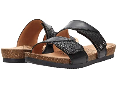 Cobb Hill Trinity Slide (Black) Women