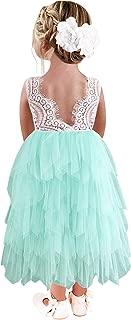 Áo quần dành cho bé gái – Girl Peony Lace Back A-Line Tiered Cupcake Tutu Tulle Flower Girl Dress