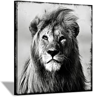 Lion Head Wall Art Print: Gray Wild Picture Painting on Wrapped Canvas for Decor in Black & White(12''x12'')