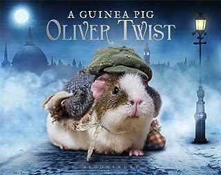Best original guinea pig Reviews