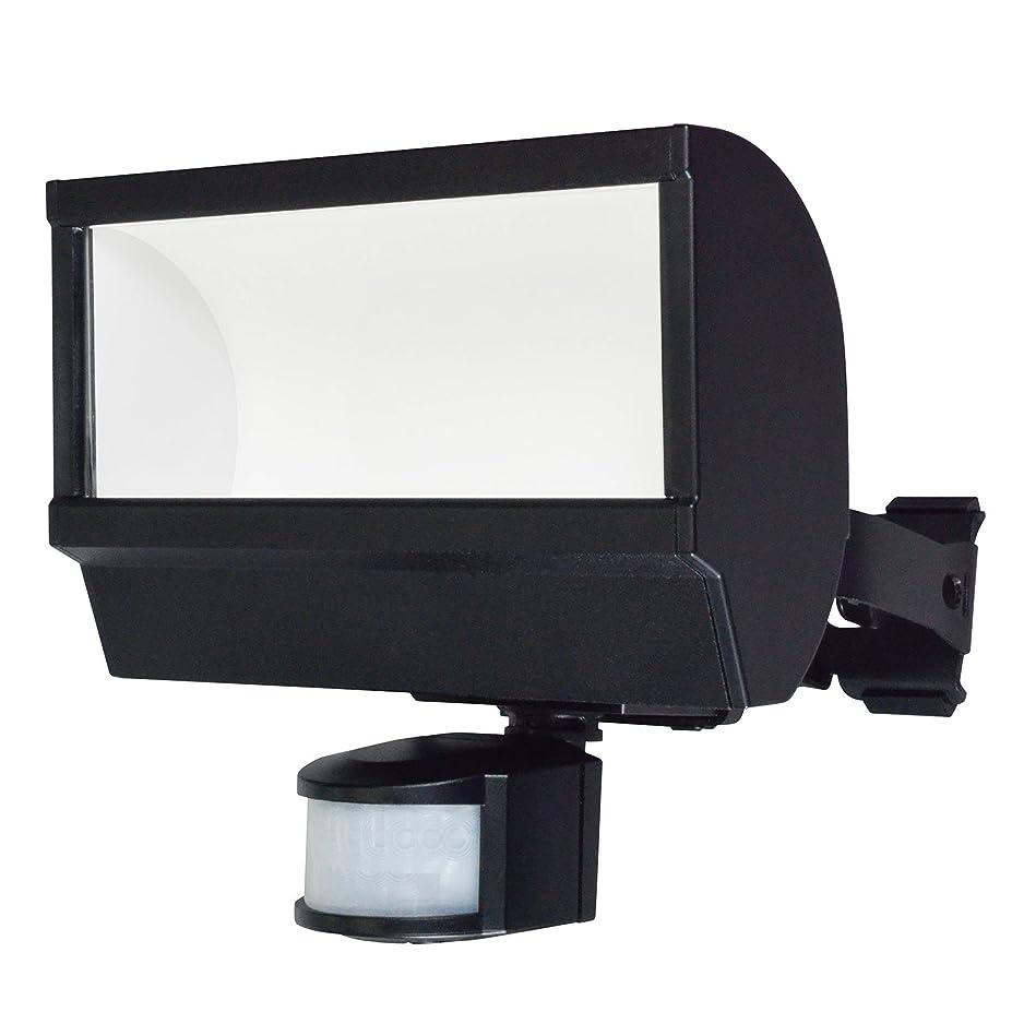 スチュワーデス肯定的主要なELPA 朝日電器 LEDセンサーライト ESL-W2001AC ESL-W2001AC