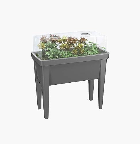2021 Decorative Indoor/Outdoor Standing online sale Raised Garden Bed popular with Ventilated Cover sale