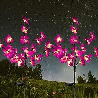 HeyMate Solar Lights Outdoor-Solar Garden Lights 2 Pack Solar Orchid Flower Lights for Garden,Patio,Backyard