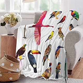 KFUTMD Summer Comforter Blanket Colored Collection Bird Set with Poly Design Triangle Mosaic Illustration for Living Multicolor Sofa Camping Reading Car Travel W60 xL80