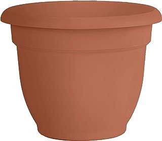 clay flower pot price