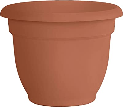 "Bloem 20-56120 Fiskars 20 Inch Ariana Planter with Self-Watering Grid, Color Clay, 20"", Terra Cotta"