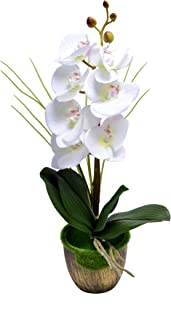 YATAI Artificial Phalaenopsis Orchid Flowers Leaves Branches Artificial Plants Real Touch Fake Flowers for Home Office Gar...