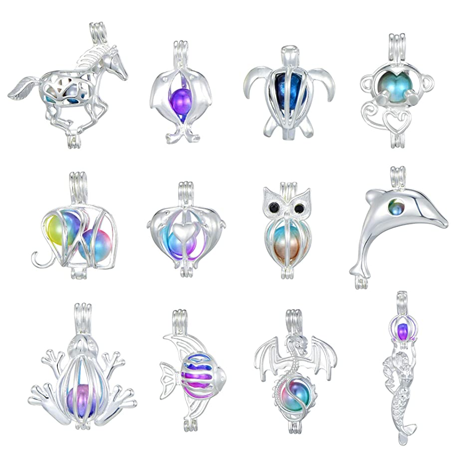 New Arrival 12 Pcs Bright Silver CutePearl Cage Beads Cage Locket Pendant Wish Oyster Pearls Charms Valentine's Day Gift (Style2)