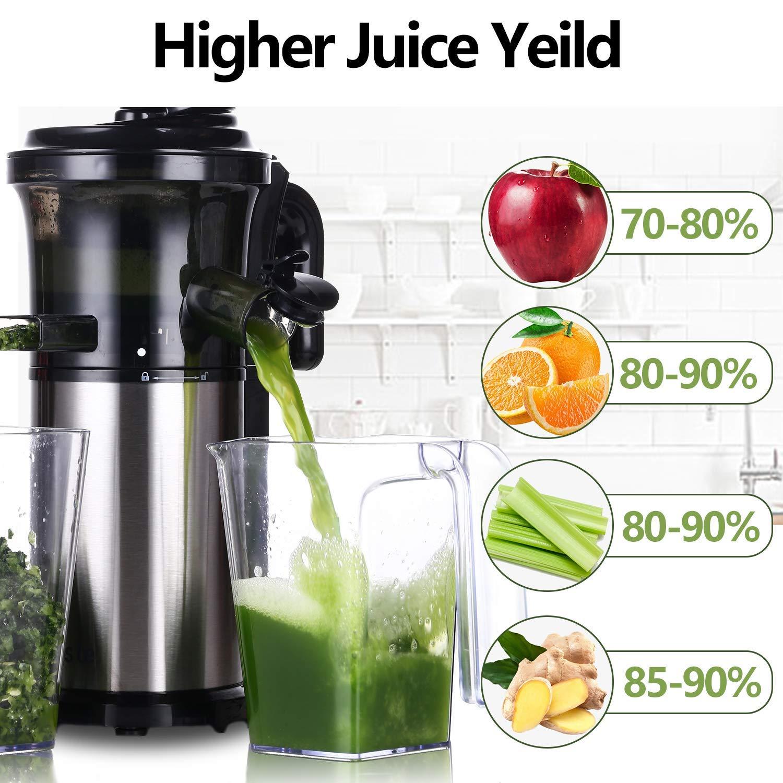 Aobosi Slow Juicer Licuadora para Fruta y Verdura de Prensado en ...