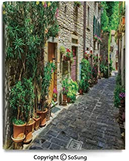 Modern Gallery Wrapped Canvas Wall Art Doorway to Tuscan House Build with Cobblestone with Many Flowering Plants Ready to Hang for Living Room Kitchen Home Decor,24x30inch Green Beige Grey