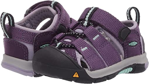 Purple Pennant/Lavender Gray