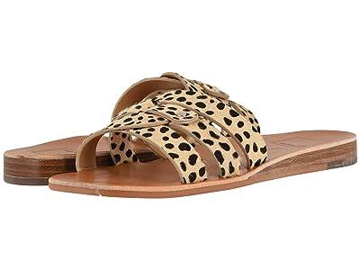 Dolce Vita Cait (Leopard Calf Hair) Women
