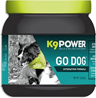 Best sports drinks for dogs Reviews