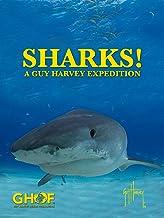 Sharks! A Guy Harvey Expedition