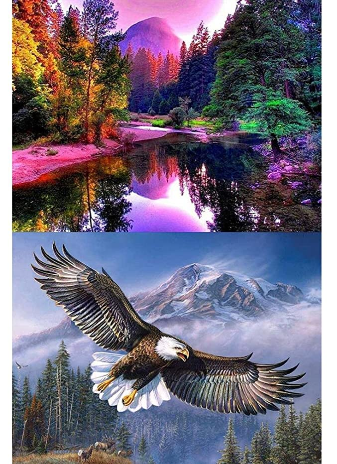 2-Pack 5D Diamond Painting Kits for Adults Full Drill Diamond Embroidery Colorful Forest & Flying Eagle