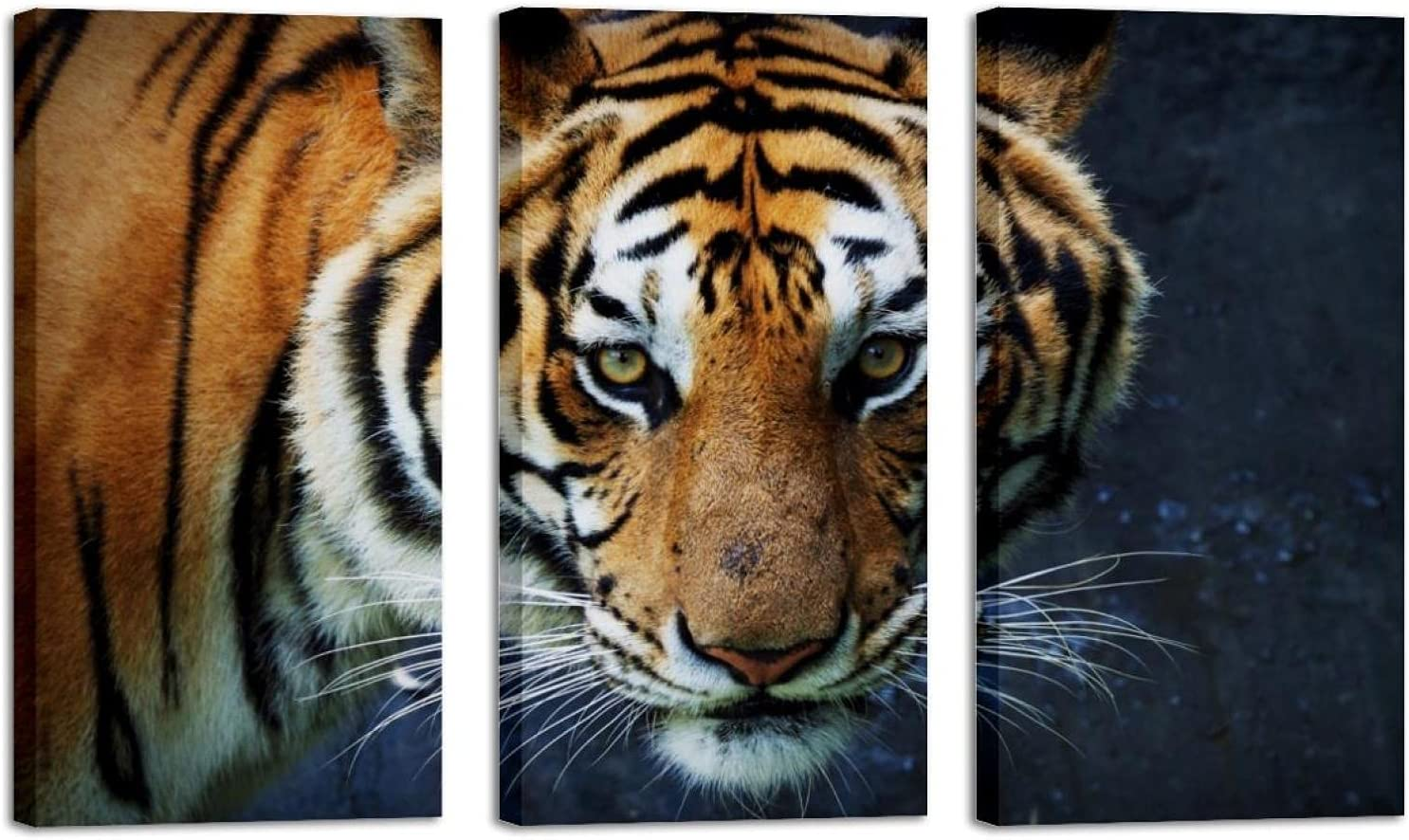 Animal Tiger At the price of surprise 2021 model