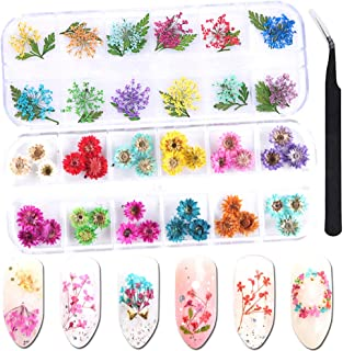 Nail Dried Flowers 3D Nail Art Decoration 48 Colors Mini Real Natural Dry Flowers for Nail Art Accessories DIY Crafts Nail Decals Stickers Manicure Charms Design Nail Tips Decor Supplies