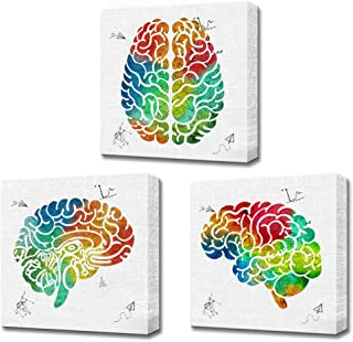 LoveHouse Posters of The Brain 3 Panel Watercolor Science Wall Art Prints on Canvas Stretched Gallery Wrap Doctor Office Classroom Medical Wall Decor Gift 12