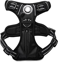 headlight harness for dogs