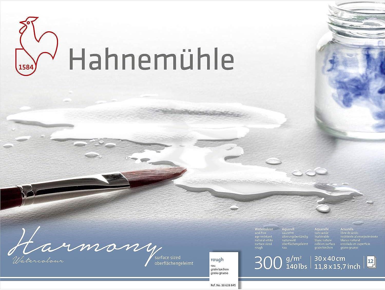 Hahnemuhle Harmony Watercolour Block,12 Sheets, 30x40cm Rough B07FQNS4LQ | Neueste Neueste Neueste Technologie  5cf368
