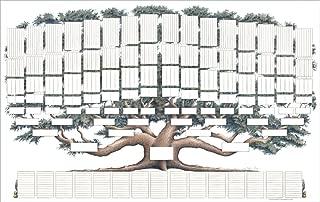 9 generation family tree chart