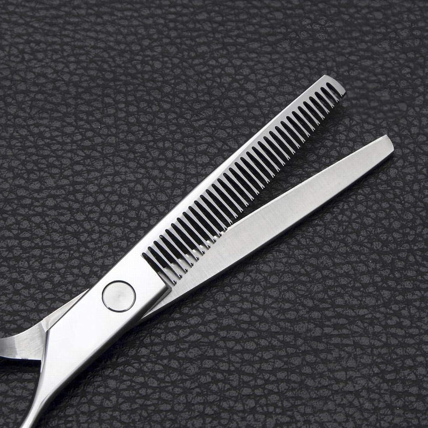 比べるビジョン番号Goodsok-jp 6インチの理髪はさみのステンレス鋼の歯のせん断用具 (色 : Silver)