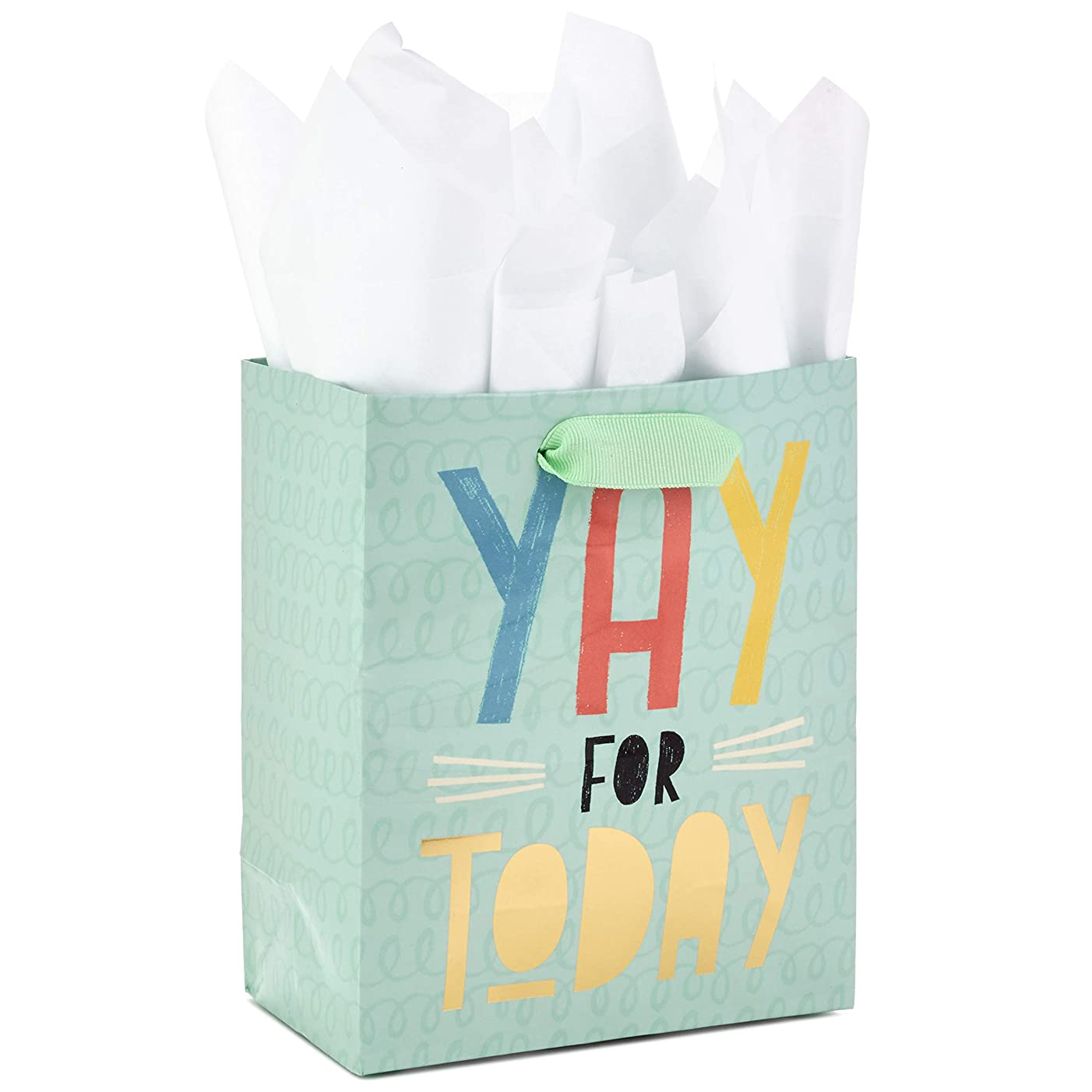 Hallmark Small Gift Bag with Tissue Paper for Birthdays, Graduations, Weddings, or Any Occasion (Yay For Today)