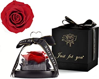 MNIEYU Eternal Preserved Real Rose in Glass Dome Gift Forever Rose,Gift for Her Valentines Day Anniversary Birthday Mother Day Christmas