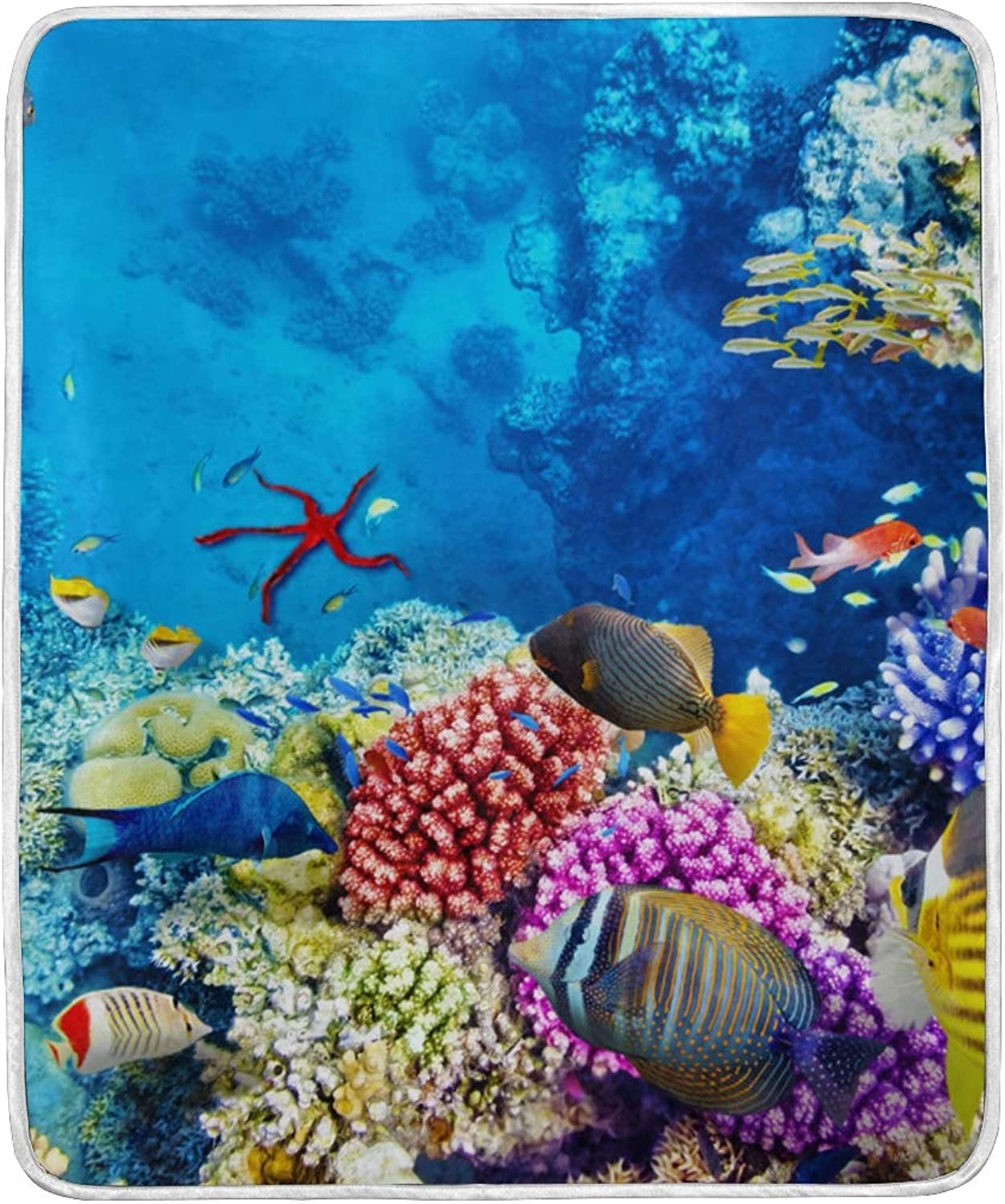 Ocean Sea Aquatic World Clown Fish Coral Throw Blanket Soft Nap Couch Bed Blankets Kid Boy Girl Women Men 50x60 inch