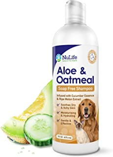 Oatmeal Shampoo For Dogs With Soothing Aloe Vera, Suitable For All Pets, With Cucumber Essence and Ripe Melon Extract, Hyp...