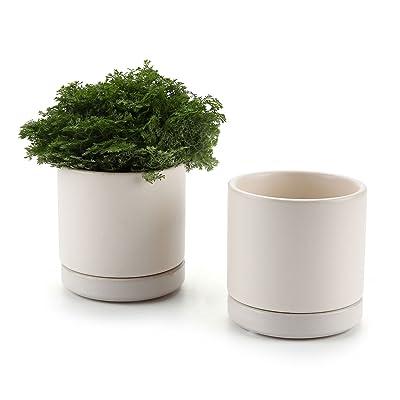 T4U 3 Inch Ceramic Pot with Saucer, Round Cameo...